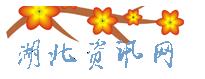 湖北资讯网