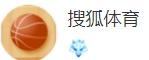 搜狐网体育