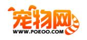 中国宠物网1