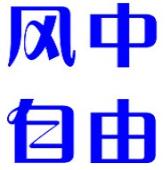 重庆晨报-上游号(风中自由)