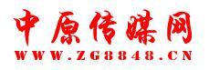 中原传媒网首页文字链